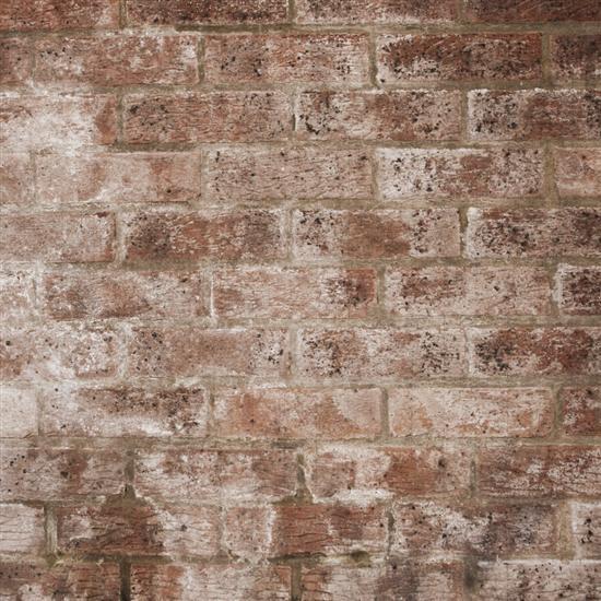 ipad復古風格高清主題壁紙