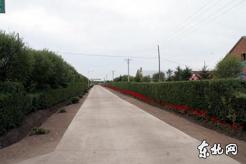【走森工 看天保】绥棱林业局产业强企 构建和谐林区