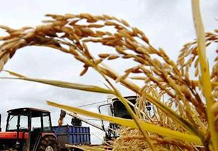 中央农村工作会议闭幕 会议主题是农业现代化