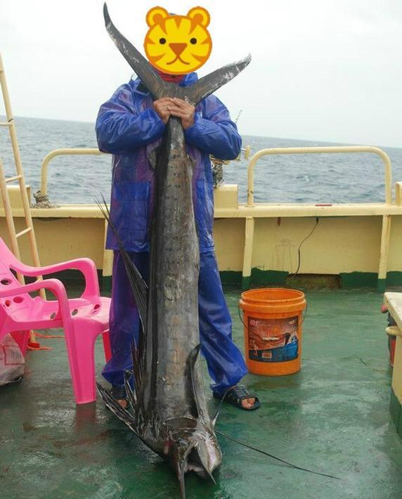 西沙群岛旅行团捕捞濒危鲨鱼 官方称将坚决查处